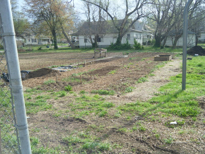 Gardening is one sustainable food resourse the Foundation is utilizing to aid in neighborhood food sustainability.