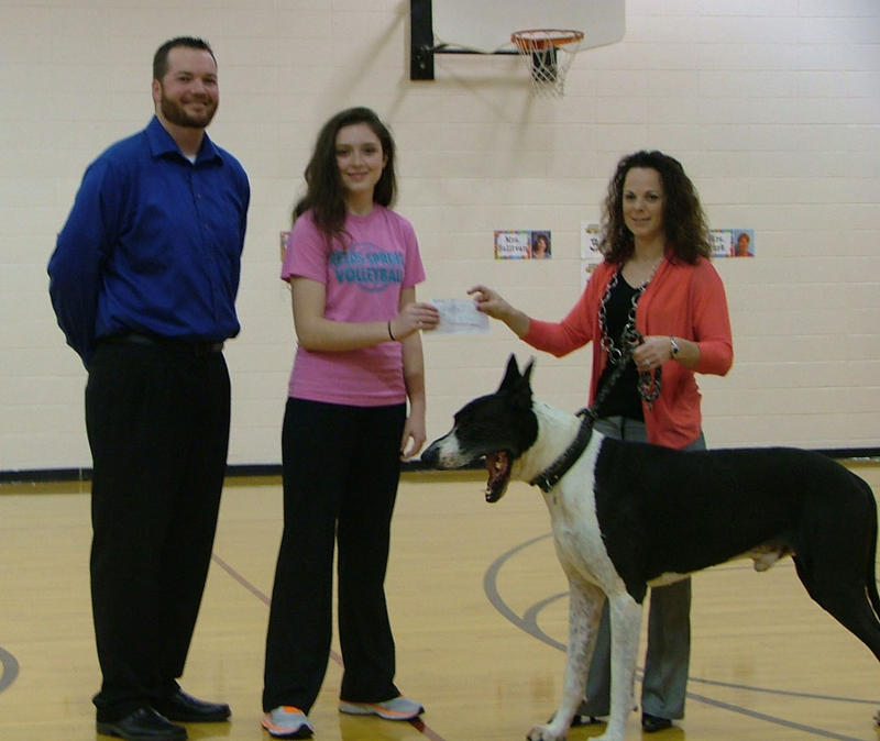 In the Reeds Spring Middle School Gym, Helping Hats Creator Sophia Greenwalt Presents a Check to the Tri Lakes Animal Shelter