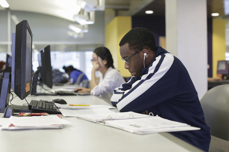 Students studying in Meyer Library
