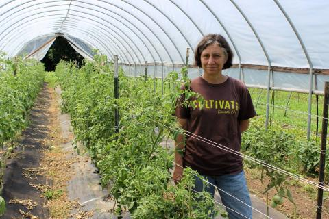 Katherine Kelly runs a Kansas City non-profit that promotes local farmers and studies how urban projects can fit into local communities.