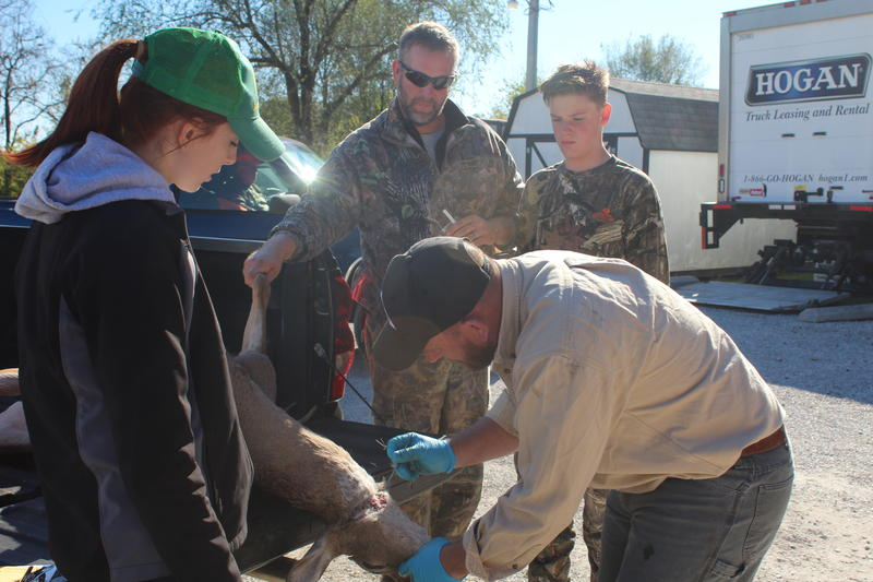 Andy Humble Removes a Lymph Node from a Deer as Brade Brake and his Son, Alex, Watch