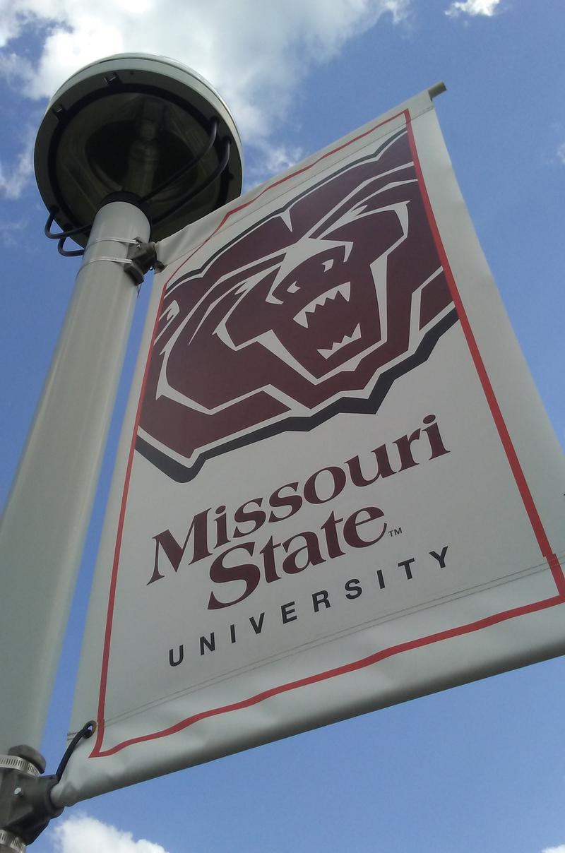 MSU banner