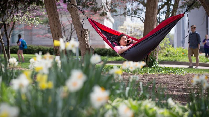 Student studies in hammock