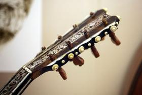 Mandolin and guitar are the featured instruments of Raccoon Venom.