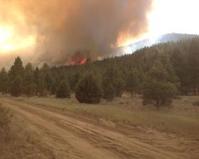 The Bryant Fire burns in Klamath County timber Thursday afternoon.
