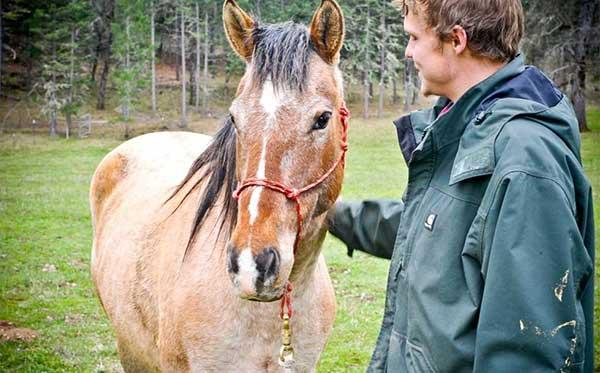 Volunteer with horse at Sanctuary One.
