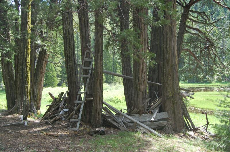 Knox McKoy's dilapidated cabin at Frog Pond.