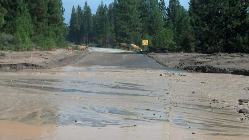 The river of mud across one of the closed roads near Mount Shasta.