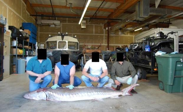 Enforcement officers pose with a sturgeon illegally caught by poachers. The officers' faces are obscured because they were working undercover on a sting that was code-named Operation Broodstock.