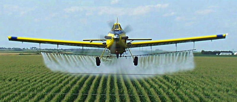One of the world's most commonly sprayed herbicides—glyphosate—is associated with the disruption of the human gut microbiome.