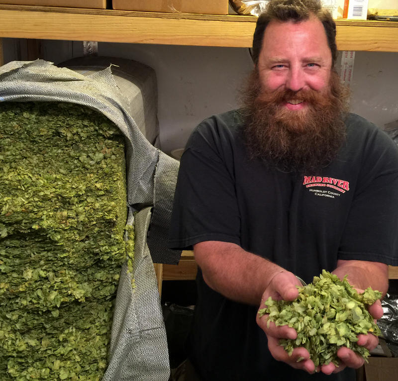 Dylan Schatz in the Hops Cooler at Mad River Brewing Company, Blue Lake, CA