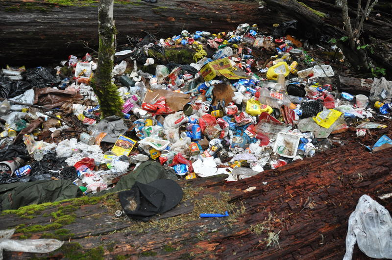 Scattered among this trash pile at an illegal marijuana grow site in Northern California are boxes of rodenticide. Research by UC Davis and Integral Ecology Research Center shows rat poison on such sites is increasingly killing fishers.