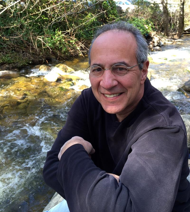 Dominick Dellasala is Chief Scientist at the Geos Institute in Ashland, OR.