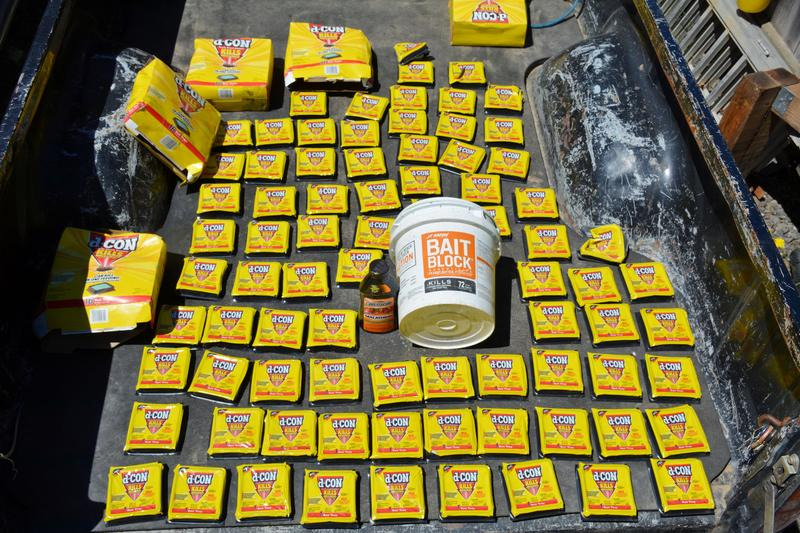 This is the amount of rat poison found at just one illegal marijuana grow site in Northern California.