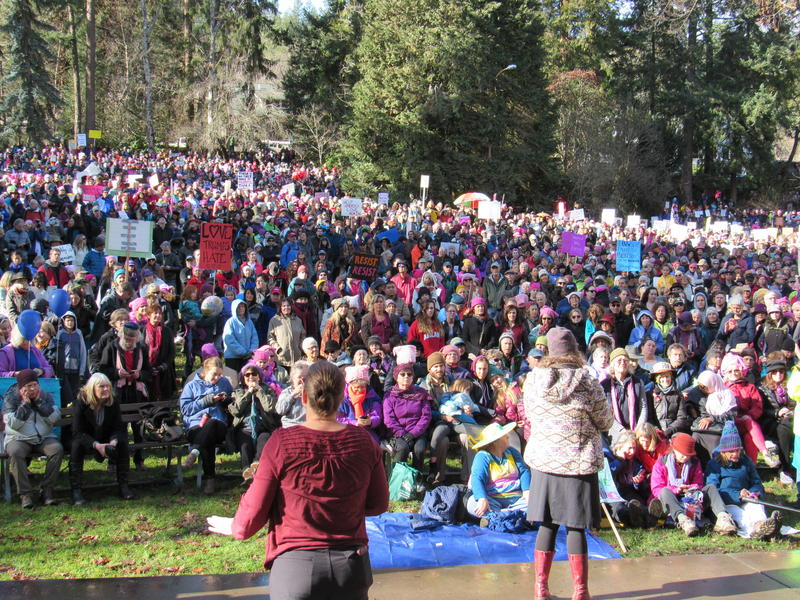 A view from the stage at the rally following the Southern Oregon Women's March in Ashland, Oregon, Jan. 21, 2017.