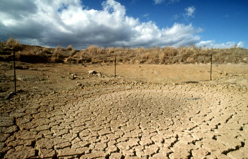 Picture of a drought affected landscape