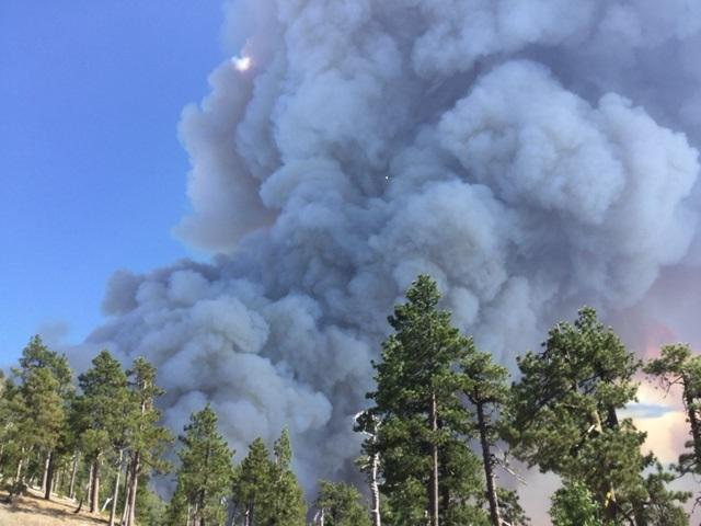 There was a heavy cloud of smoke over the Oak fire as fire activity increased on Aug. 18.
