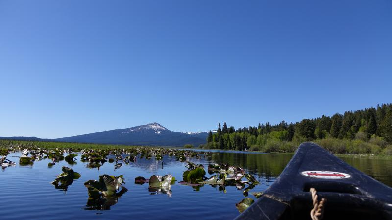 Canoe trails run through several of the national wildlife refuges in the Klamath Basin.