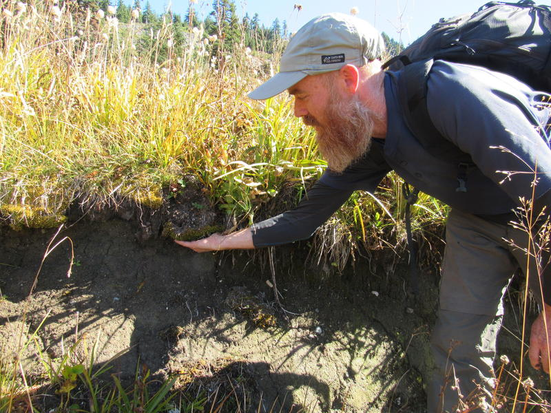 Luke Ruediger examines damage to a spring caused by cattle.