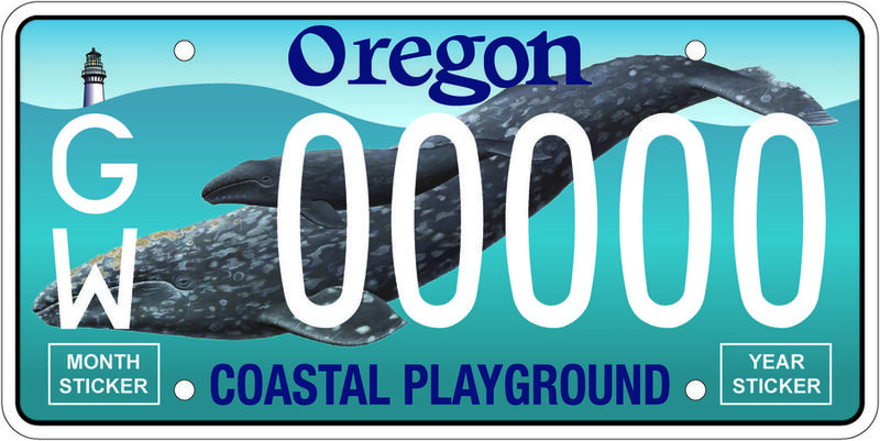 The new license plate designed to benefit OSU's Marine Mammal Institute.