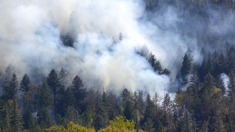 A crew from the Medford District of the Bureau of Land Mangement sets a prescribed burn on 135 acres in the Applegate Valley of southern Oregon.