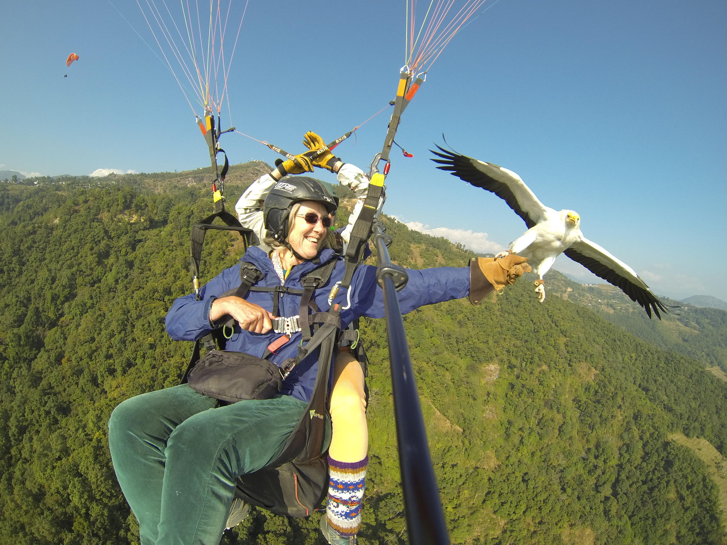 Image of: Image Christine Jinga Tries Her Hand Parahawkinga Nepalbased Sport That Combines Falconry And Paragliding flying With Vultures Watching The Dawn On Jefferson Public Radio Old And On Their Way Jefferson Public Radio