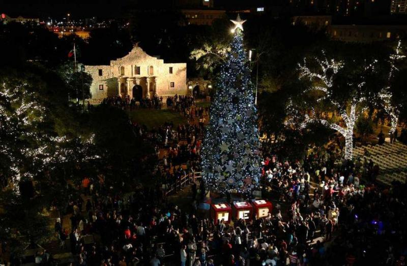 HEB Alamo Tree to be lit Friday evening, Nov. 23, 2012.