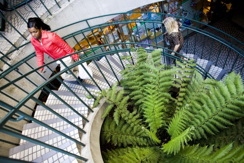 Health officials say beautiful stairways encourage more people to exercise