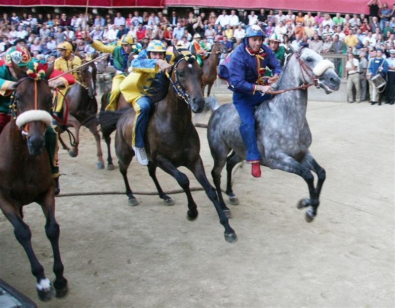 Palio race, 2006.
