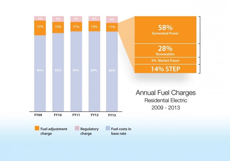 blog.cpsenergy.com/fuel-costs-transparency