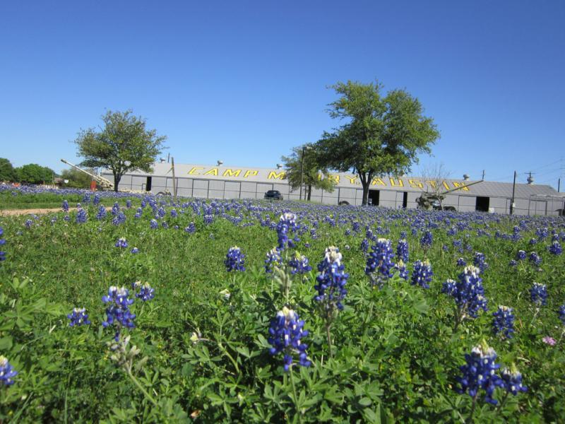 Parade grounds at Camp Mabry, Austin.
