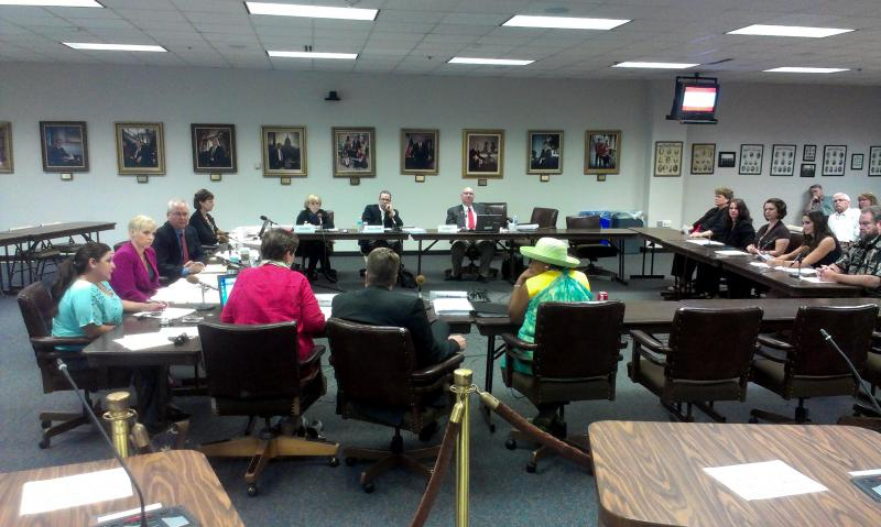State Board of Education public comment hearing.
