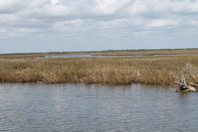 Matagorda estuaries.