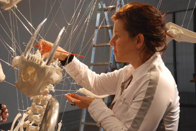 Spring 2011 Artpace resident artist E.V. Day