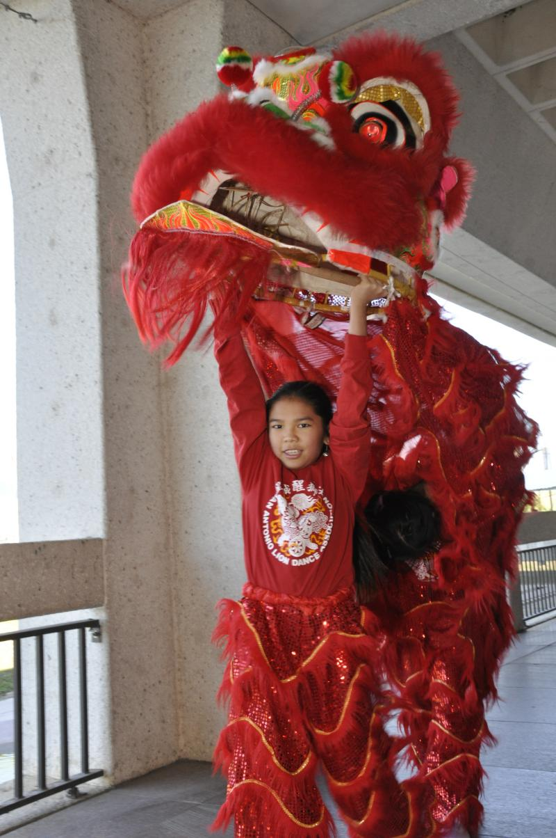 Lion dancer, Asian Festival.