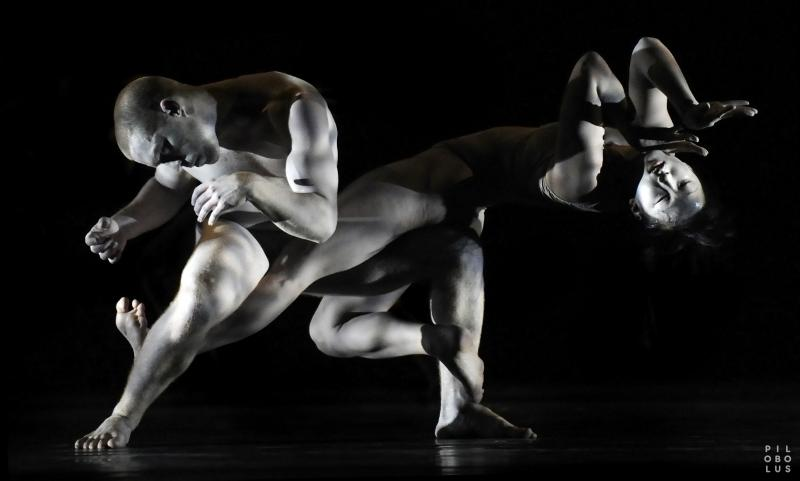 Pilobolus Dancer Theater