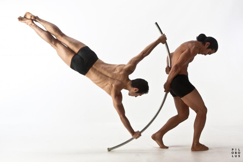 Pilobolus Dance Theater