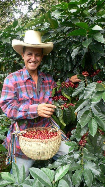 Peru's coffee industry hopes to make new strides in business development, thanks to UTSA's Small Business Development Center training.
