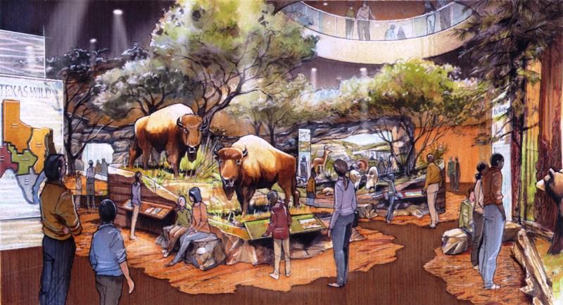 Texas Wild Gallery