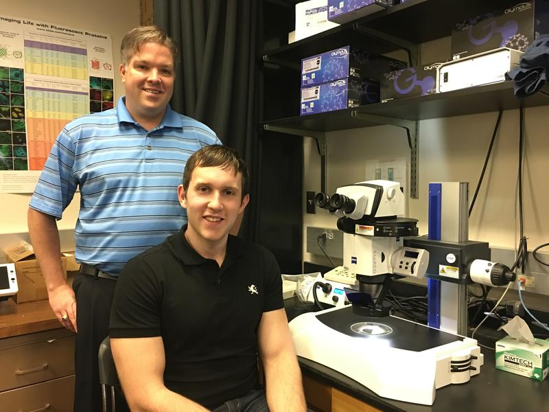 Brian Hermann, Ph.D. (standing) and UTSA student Travis Kotzur are working on treating infertility in young male cancer patients.