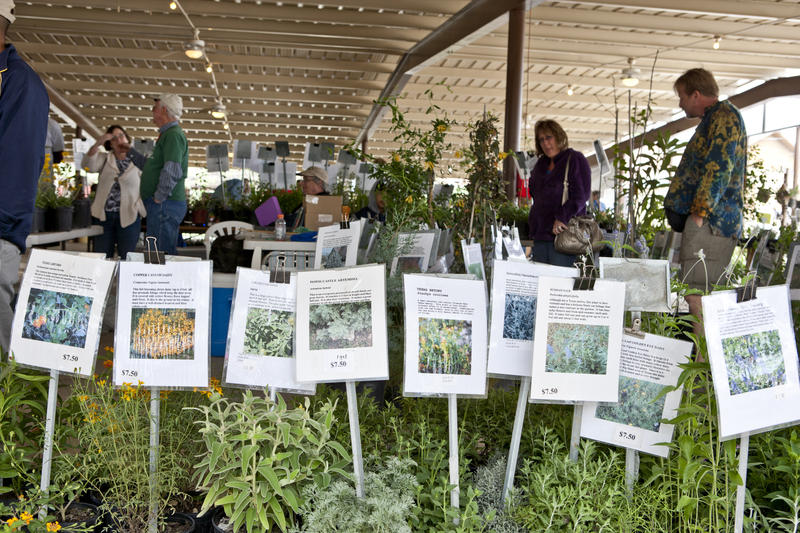 Mostly Native Plant Sale