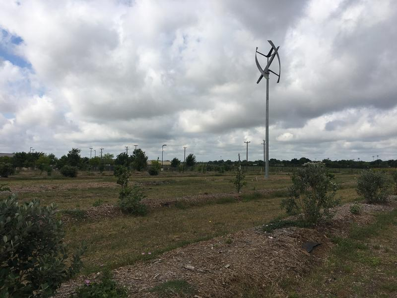 This is the 25-acre farm adjacent to the San Antonio Food Bank.
