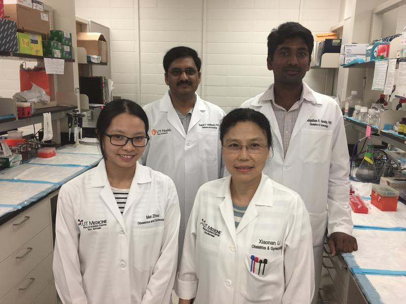 Ratna Vadlamudi, Ph.D. (top left) works in the lab with assistant professor Gangadhara Sareddy, visiting student Mei Zhan, and lab technician Xiaonan Li.