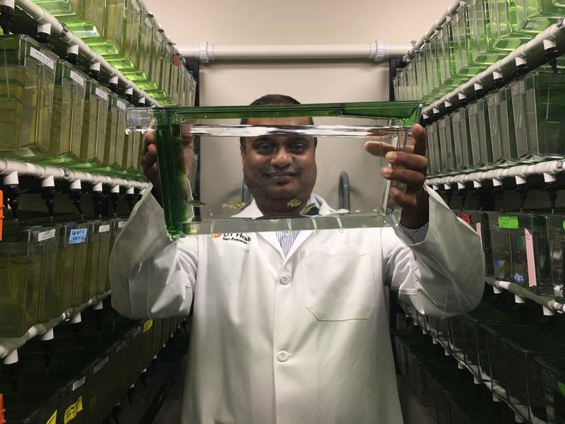 Myron Ignatius, Ph.D., holds up a tank of zebrafish at the Greehey Children's Cancer Research Center.