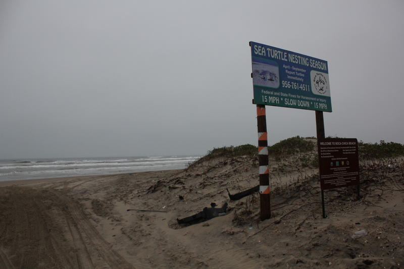 A half mile from SpaceX's future launch pad is Boca Chica State Beach.