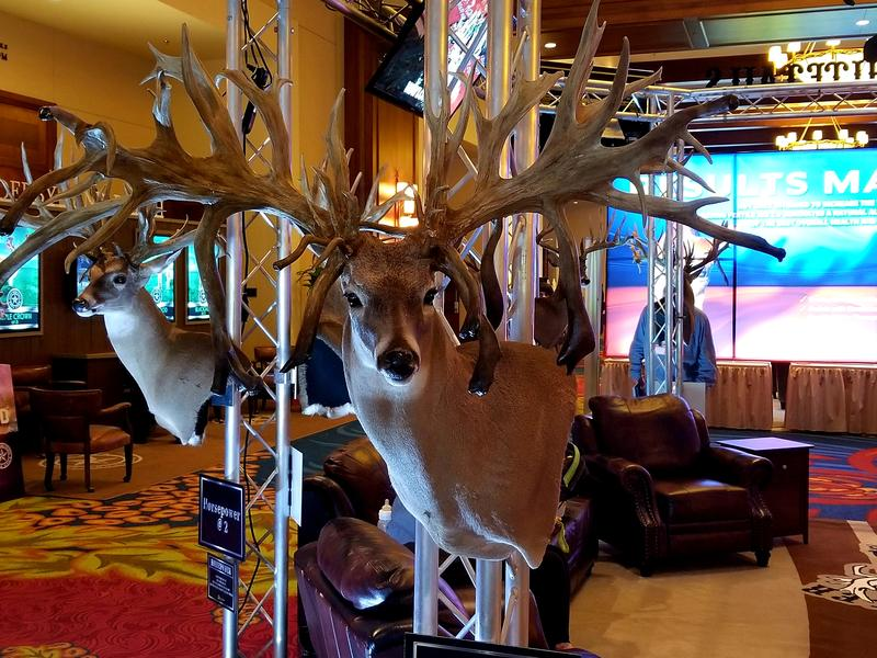 Vendors at the Texas Deer Association's annual convention and auction at the JW Marriott-Hill Country Resort.