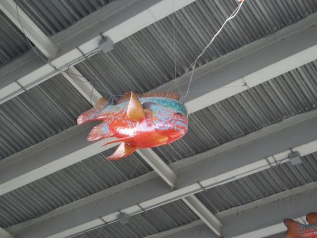 Updated with pictures winds damage f i s h sculpture for Sjfc fish r net