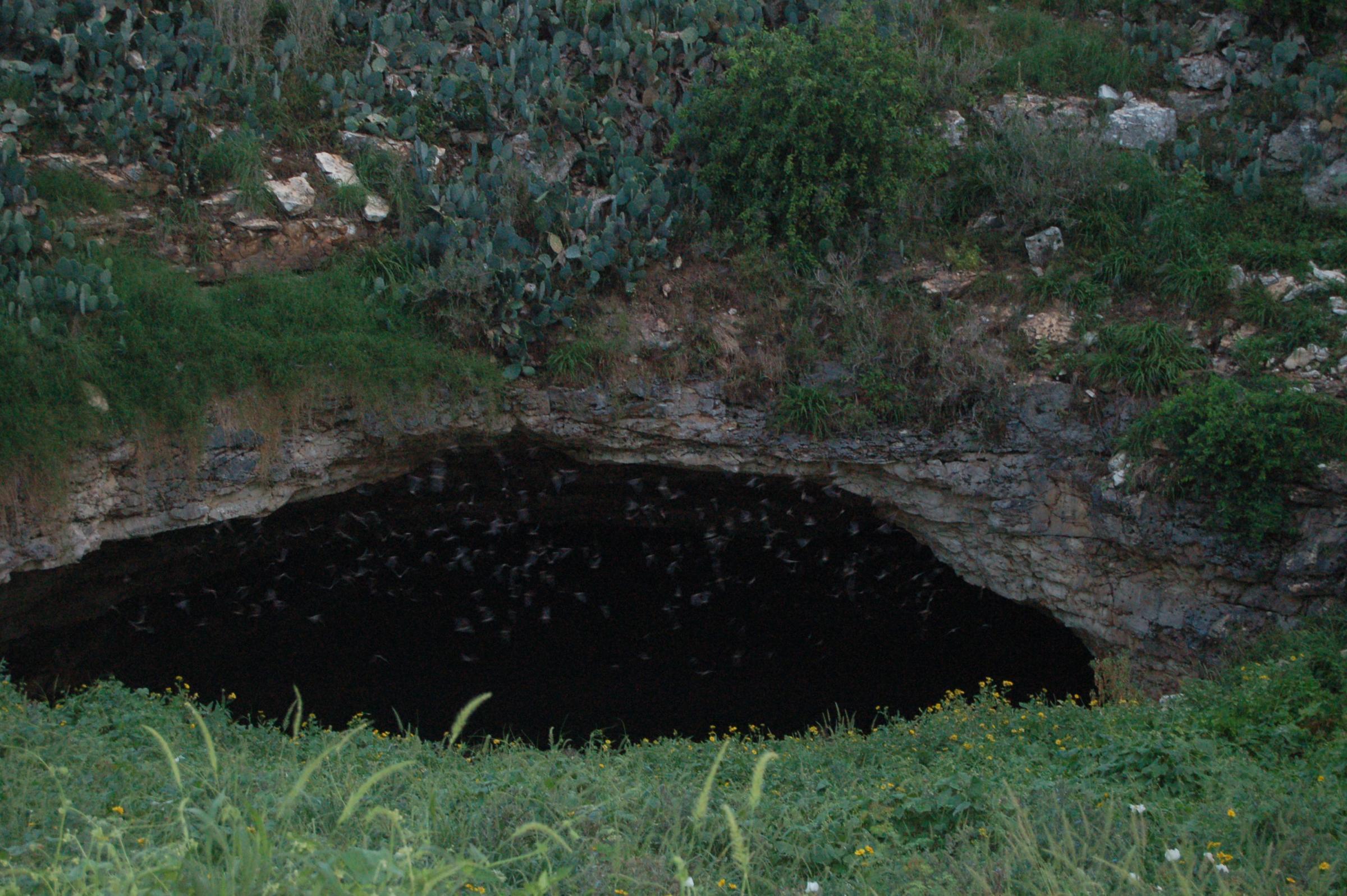 meet bat cave singles Batcavedesigns.