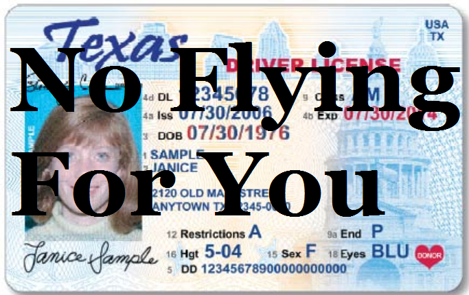 Texas drivers license form dl40