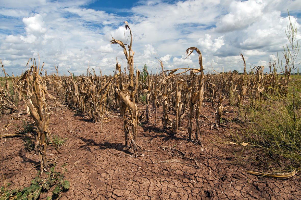 texas matters historic drought the future of water in texas